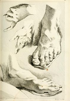 Hand and foot studies drawn with cross-hatching, from Théorie de la figure humaine Anatomy Sketches, Anatomy Drawing, Anatomy Art, Drawing Sketches, Life Drawing, Figure Drawing, Drawing Reference, Painting & Drawing, Amazing Drawings