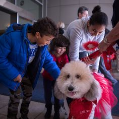 """""""It was really different to see the dogs dressed up for Valentine's Day,"""" says 13-year-old Nour Ammar, pictured right, with her 9-year-old brother, Mazen Ammar, pictured left, and her 4-year-old sister, Mariam Ammar, pictured center. """"My brother had an appointment for his ears. We always come here to see the doctor. This is our first time seeing the dogs, though. They're all so friendly. This is the first time my sister has touched a dog.  She really liked it."""""""