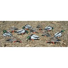9 Inspiring Decoys Images Waterfowl Hunting Duck