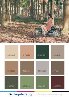 Tree Woody Plant Color Palette #colors #inspiration #graphics #design #inspiration #beautiful #colorpalette #palettes #idea #color #colorful #colorscheme #colorinspiration #colorcombinations #colorcombos #colorpalette_org