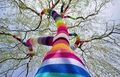 Carol Hummel habille les arbres des villes de mailles colorées
