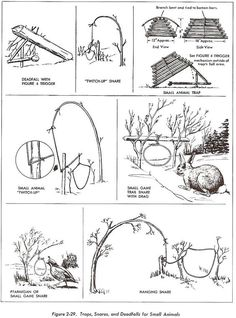 How to Survive in the Wild Homestead Survival, Wilderness Survival, Camping Survival, Outdoor Survival, Survival Shelter, Winter Survival, Bushcraft Camping, Survival Life Hacks, Survival Tools