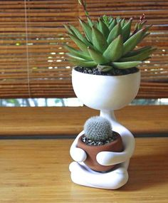 A cactus is a superb means to bring in a all-natural element to your house and workplace. The flowers of several succulents and cactus are clearly, their crowning glory. Cactus can be cute decor ideas for your room. Decoration Cactus, Decoration Plante, Cactus Flower, Flower Pots, Flower Ideas, Flower Bookey, Flower Film, Flower Band, Jardiniere Design