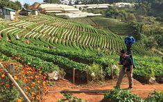 Thailand's Google Street View Backpacker   Travel + Leisure