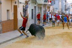 torodigital: Un buen toro de Cebada Gago para la última jornad...