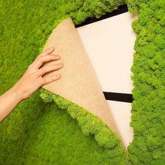 Living Wall Moss Tile Green 16x24 installation #ContemporaryInteriorDesignideas