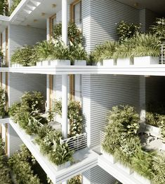 Green & Vegetal Sky Villa Residences in India