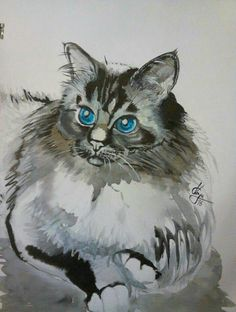 Watercolor cat Watercolor Cat, Watercolor Animals, Cat Paintings, Cat Sleeping, Sketch Painting, Here Kitty Kitty, Cat Drawing, Animal Drawings, Pet Portraits