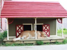 27 Innovative Doghouse Designs : This barn-style abode is a two-room duplex for sisters Greta and Gypsy. The red roof, gingerbread trim and well-built details make it a winner. Dog House Plans, Cool Dog Houses, Niches, Animal Projects, Pet Home, Animal House, Pet Beds, Picture Design, Dog Life