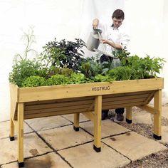 La Mesa de Cultivo Veg Trug - Disponible en Nuestra Nueva Tienda
