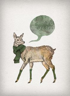 Winter Collection 2011 by David Fleck, via Behance