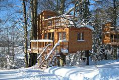 Baumhaushotel - Ferienhof und Baumhaushotel im Allgäu- Familie Bechteler in…