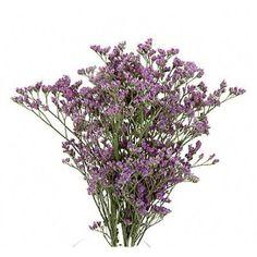 Purple Limonium - filler / groomsman boutineers + the mango cala lily
