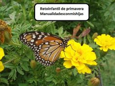 Manualidades con mis hijas: Retoinfantil de primavera en mayo Mayo, Daughters, Infant Crafts, Spring