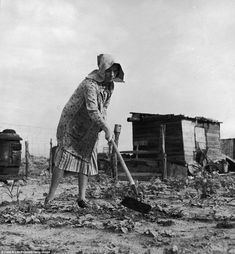 """Venus Barnett trying to raise vegetables in garden of family farm in the Dust Bowl for a second time after a windstorm blew the first seedlings away."""