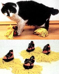 "Feel like your cat is, well, lying around and not doing enough around the house? Why not strap these cat duster slippers on its paws so that your kitty can help dust your floors as it strolls around. ""Obviously you'll have to ignore the fact that they lick their anus ... then lick their paws, thus spreading cat anus all over your nice new floor boards,"" Brandish.com says."