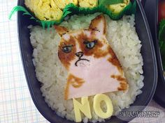 grumpy_cat_bento