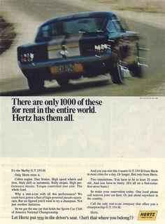 1966 Shelby GT350  Ob europcar das auch hinbekommen würde?