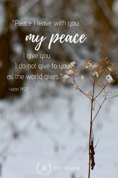 Christian Quotes:Praise God that we can find peace in Him! Read more Bible verses to help you grow in faith! Scripture Images, Bible Verses Quotes, Faith Quotes, Strong Quotes, Wisdom Quotes, Positive Bible Verses, Bible Quotations, Religion Quotes, Scripture Verses