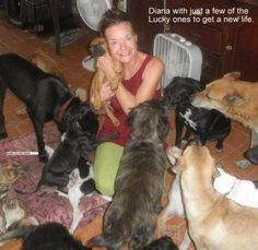 WALL OF SHAME:     <<< YA SURE!!!   DIANE #PETERS With DEATH ROW DOGS RESCUE!!  this woman is the WITCH of ALL SCAMMERS!! She takes photos of dogs that have been res...cued or random dogs and says she is rescuing them, she takes in donations constantly, but yet she really isnt saving dogs!! She will tell people their are strays she is feeding and takes photos off of the internet etc, she is CRAZY! STAY away from this page: https://www.facebook.com/pages/Death-Row-Dog-Rescue/166091649182