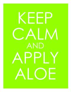 L'BRI pure and natural! Aloe Vera based skin care gailharris.lbri.com