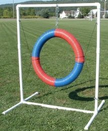 How to Build a Tire Jump for Dog Agility