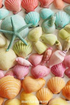 In a rainbow of colors, dyed seashells make a great way to add some creativity to your summer. Whether you're looking for a craft for the kids or simply want to make your own colorful ocean keepsake to pass the time, you can create these bright-hued shells at home. #marthastewart #crafts #diyideas #easycrafts #tutorials #hobby