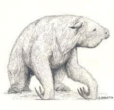 Megatherium - Diego Barletta Prehistoric Age, Prehistoric Creatures, Vida Animal, Dinosaur Art, Cryptozoology, Weird Creatures, Creature Design, Cool Drawings, Polar Bear