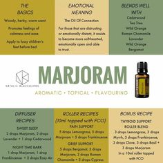 A Beautiful and Short Essential Oil Patchouli Guide For Patchouli Essential Oil benefits Marjoram Essential Oil, Ginger Essential Oil, Patchouli Essential Oil, Essential Oil Diffuser Blends, Doterra Essential Oils, Doterra Blends, Doterra Diffuser, Cedarwood Essential Oil Uses, Diffuser