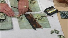 Video: Landscape Quilting Workshop Part 1 | Watch Sewing with Nancy Online | WPT Video. 3 parts available. good tute.