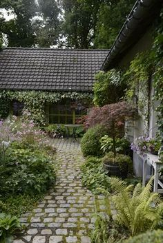 Mossy stone path and ferns. Nice array of cottage type gardens.
