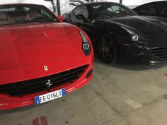 Black or Red???