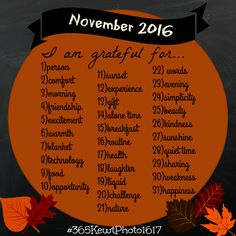 November 2016 Photo Challenge. 31 Day Photo Challenge. Kewt Photography. Find me on facebook! Kewt Photography! Use #365KewtPhoto1617 on Insta and Twitter!