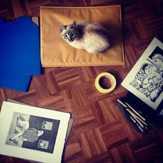 Packaging prints in Porto with Plato, the cat.  #packaging #print #printmaking #etching #cat