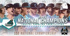 Coastal Carolina wins NCAA baseball championship https://twitter.com/NCAACWS/status/748614767196024833 Love #sport follow #sports on @cutephonecases