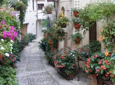 .Assisi - Italy