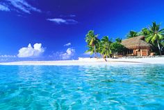 Hawaii...my dream vaca!!!!! I AM going some day!