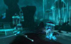 cave-mushrooms_00390994.jpg (1680×1050)