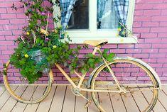 Vélo, Décoré, Vieux, Planté, Vert
