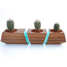 Boxcar Succulent Planters by Revolution Design House