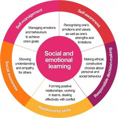The components of the social and emotional learning framework.