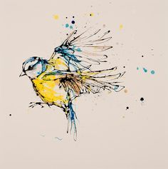 Kathryn Callaghan Fine Art | blue tit