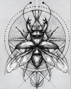 Emily Rose Aartsen - Beetle tattoo design