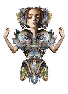 collage illustration by Maren Esdar