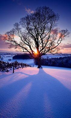 Snow Sunset  Eshton, England