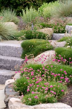 Pellettieri Associates Inc. Lake Tahoe, Go Outside, Garden Paths, Landscape Architecture, Stepping Stones, Garden Design, Architects, Outdoor Decor, Plants