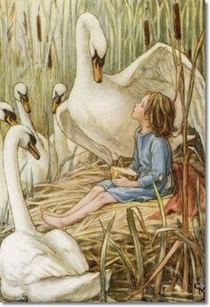 Cicely Mary Barker, The Lord of the Rushie River - Stretching One Wing…
