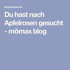 Du hast nach Apfelrosen gesucht - mömax blog