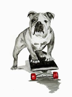 Skater Bulldog watercolor