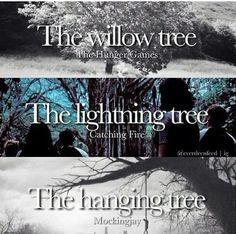 The trees in the Hunger games, catching fire, and mockingjay.why did I never notice? <<<The tree is the focal point in each book, wow Suzanne Collins is acc so smart The Hunger Games, Hunger Games Memes, Hunger Games Fandom, Hunger Games Catching Fire, Hunger Games Trilogy, Catching Fire Quotes, Katniss Everdeen, Katniss And Peeta, Mocking Jay